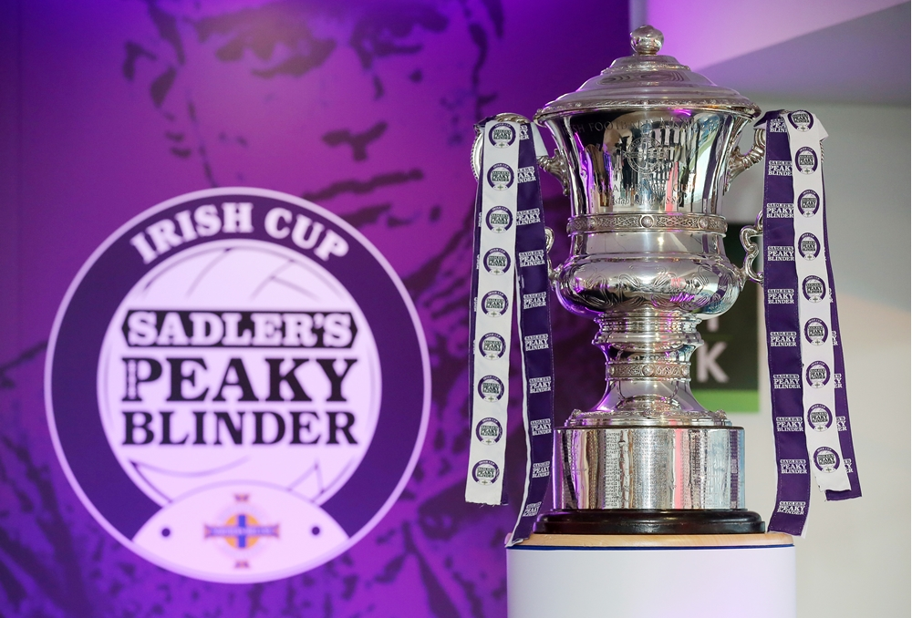 Irish Cup semi-finals and finals to be played at Mourneview Park